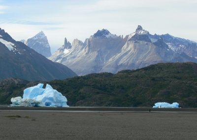 Tour glaciar grey + full day paine + milodon